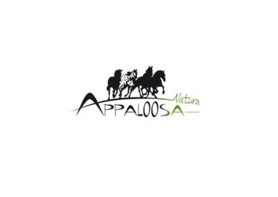 Appaloosa, le meilleur pour les chevaux