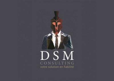 DSM Consulting